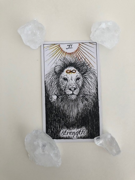 strength card in wild unknown tarot deck