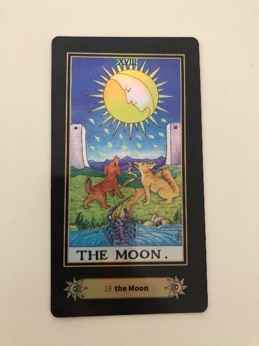 Card represents Pisces